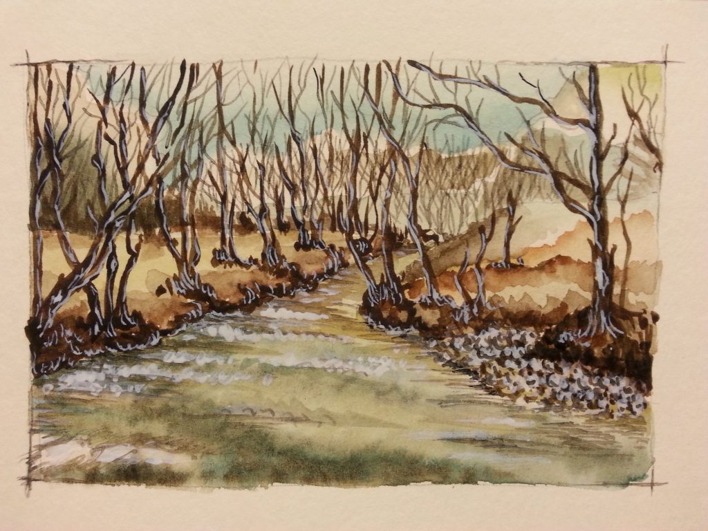 torrente in inverno